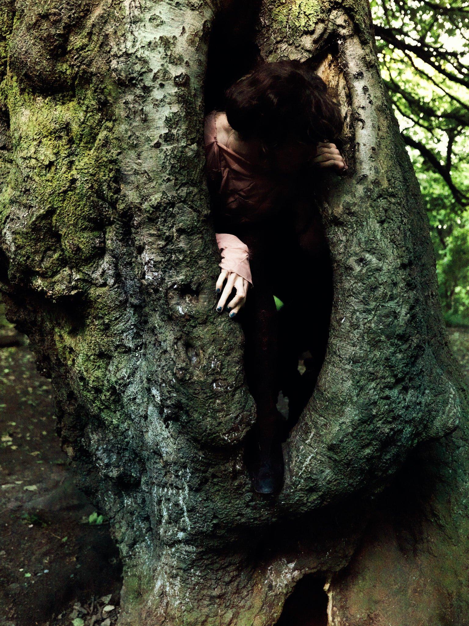 Adam Christensen – inside a tree